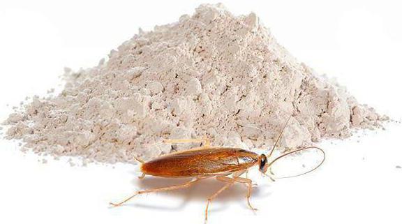 как избавиться от тараканов в домашних условиях навсегда