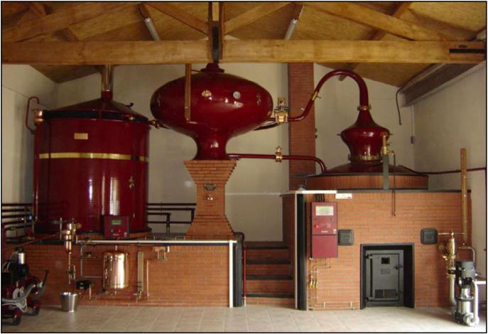 производство коньячного спирта