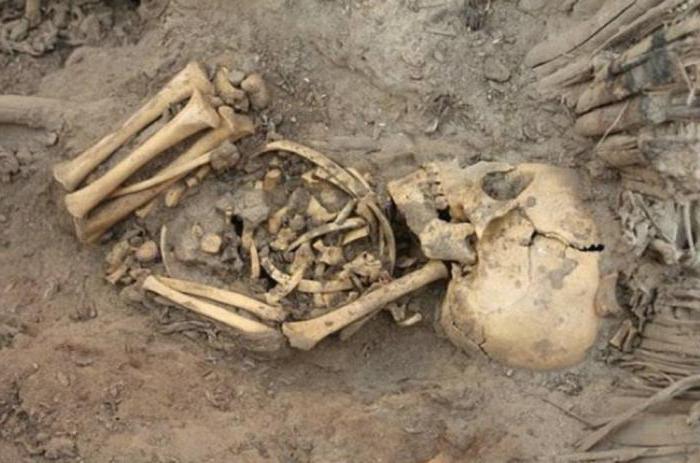 Необычные находки археологов.