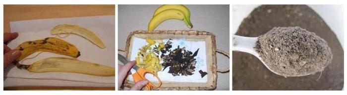удобрение из банановой кожуры для комнатных растений отзывы