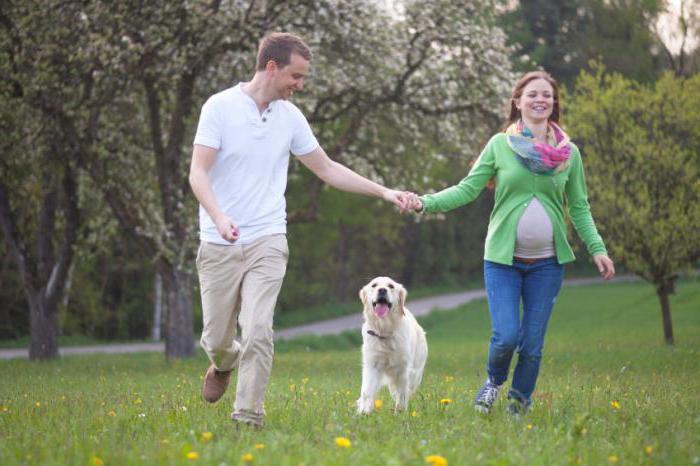 давление низкое пульс высокий что делать при беременности