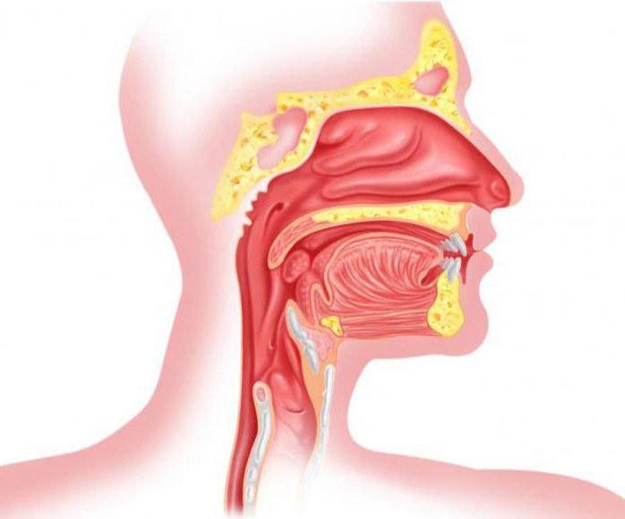 Боль в горле затяжное