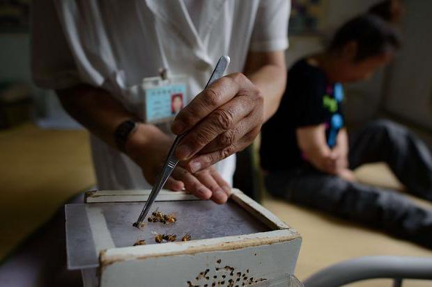 Метод лечения варикоза пчелами (апитерапия)