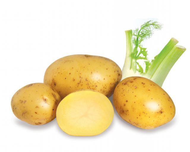 Картофельный сок при гастрите отзывы