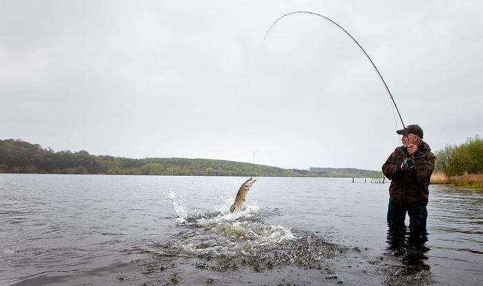 Рыбалка на щуку в сентябре