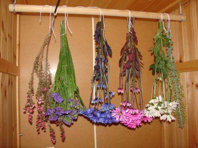 как высушить цветы