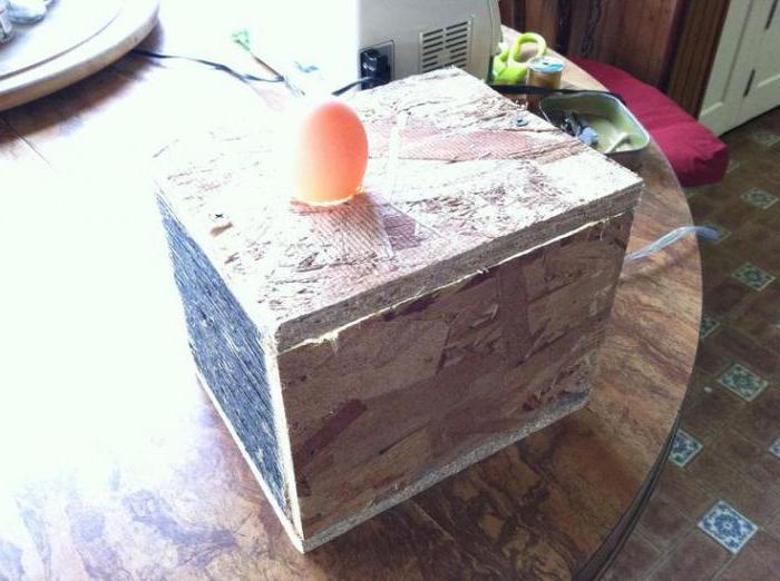 овоскоп для проверки яиц своими руками