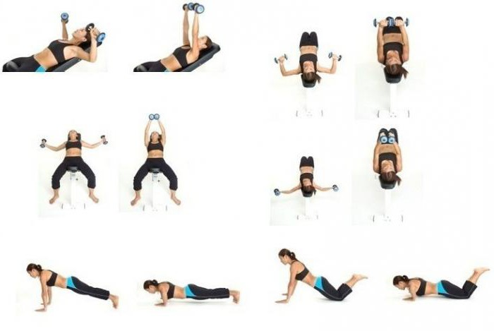 Самое эффективное упражнение для грудных мышц
