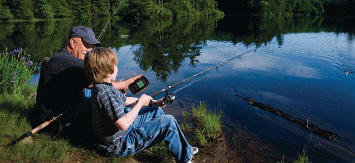 эхолот для рыбалки зимой и летом
