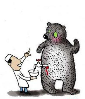 Медвежья желчь лечение рака