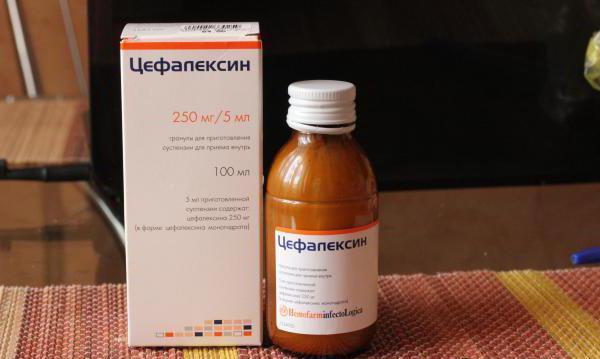 препарат цефалексин инструкция - фото 6