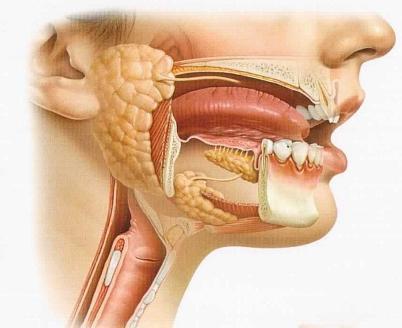 Ретенционная киста нижней губы: причины, лечение
