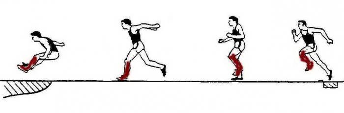 Залогом успеха прыжка в длину
