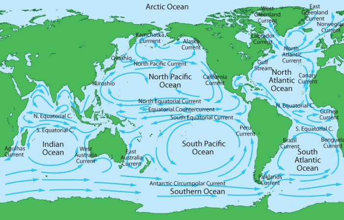течение Тихого океана.