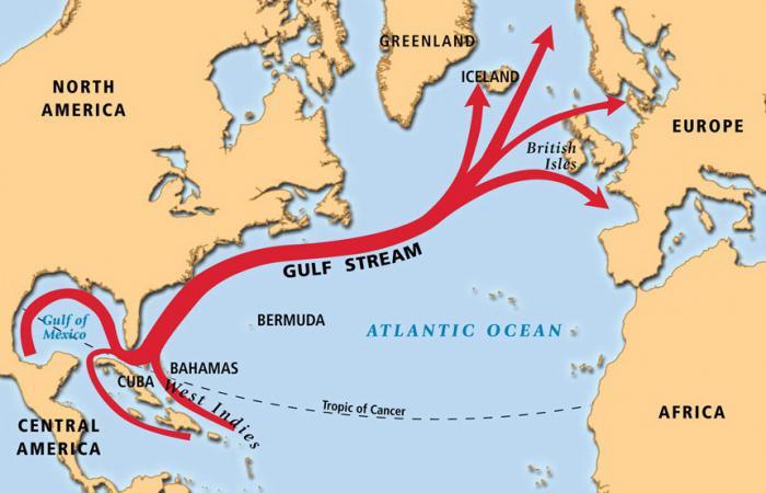 Соленость акватории океана