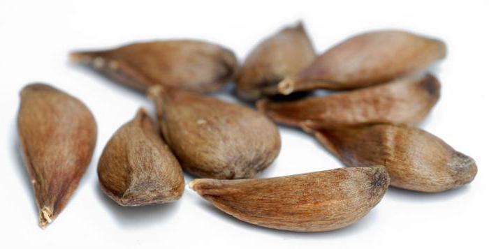 Секс семени тыквы