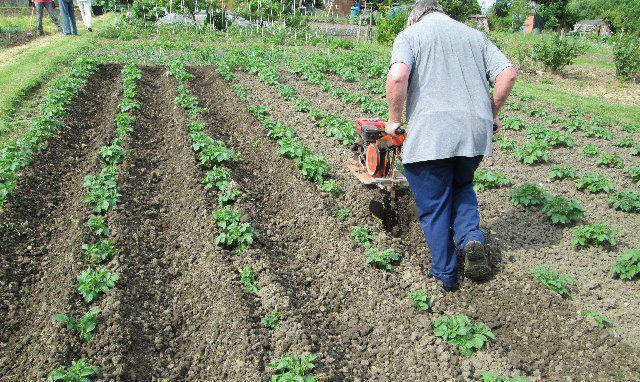 Плуг ручной для посадки окучивания и выкопки картофеля