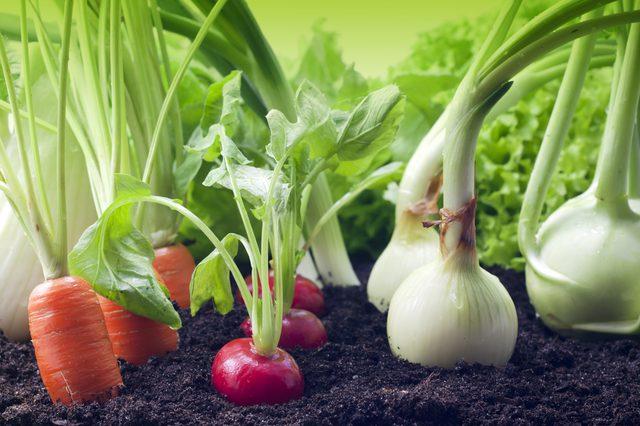 Что выгодно выращивать самому
