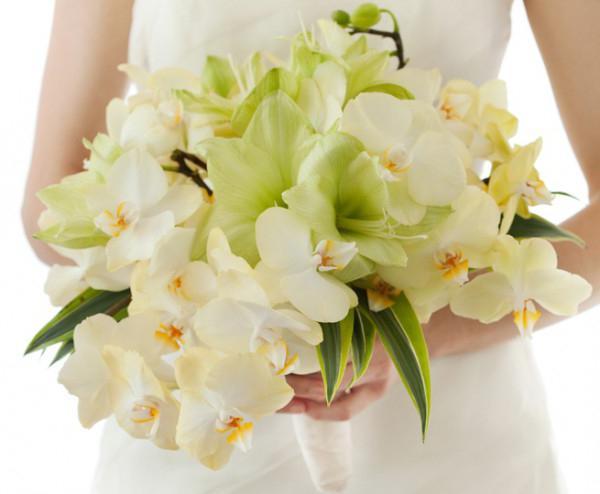 Какие цветы любят женщины близнецы