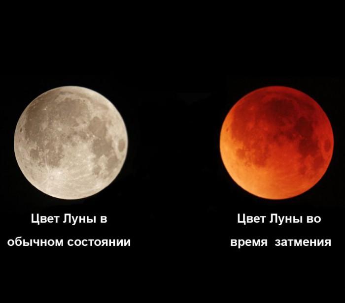Кровавая Луна Скачать Через Торрент - фото 3