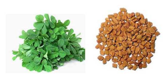 чай с сенной для похудения отзывы