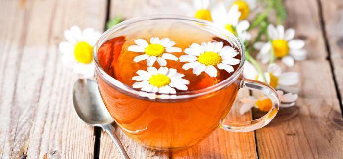 Противопоказания к чаю из ромашки