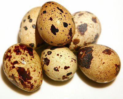 Как надо употреблять перепелиные яйца натощак