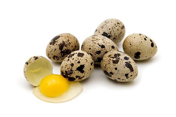 сырые перепелиные яйца натощак