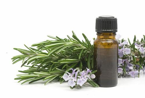 Пихтовое масло: лечебные свойства, применение