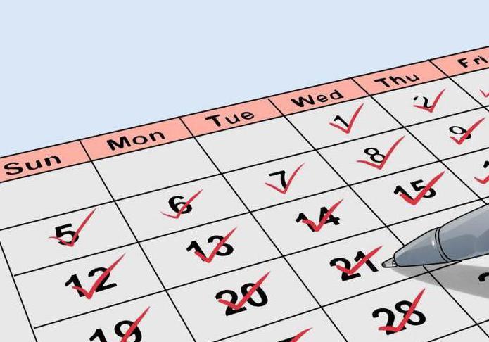 Узи женских органов на какой день цикла