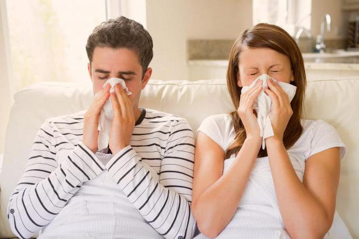 Чем парить нос при насморке