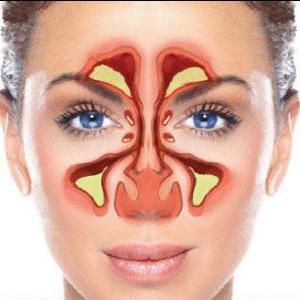 риноскопия носа
