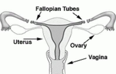 Перевязка труб у женщин: последствия. Какими могут быть последствия перевязки труб?