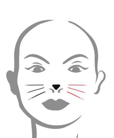 Как на лице нарисовать кошку