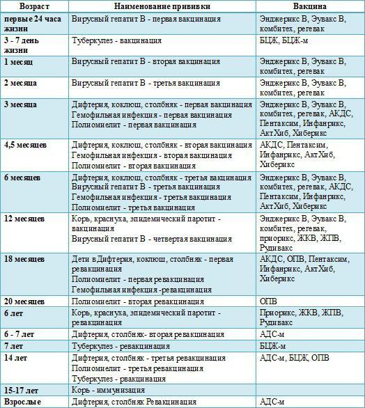 Расписание прививок для детей до года