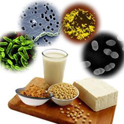 Что пить при дисбактериозе кишечника от антибиотиков 2