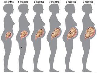 шевеление плода при беременности 18 недель