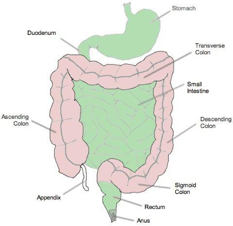 клизма микролакс