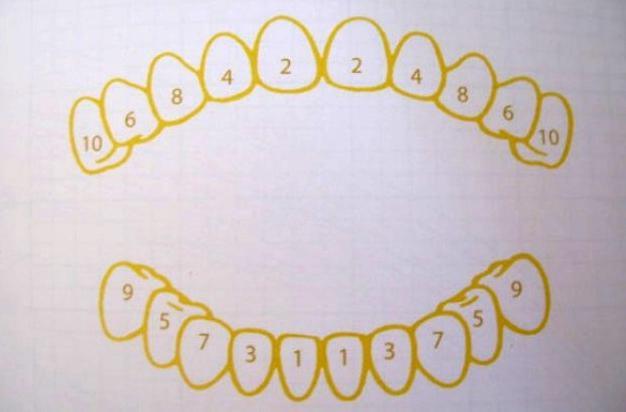в каком порядке лезут зубы у детей