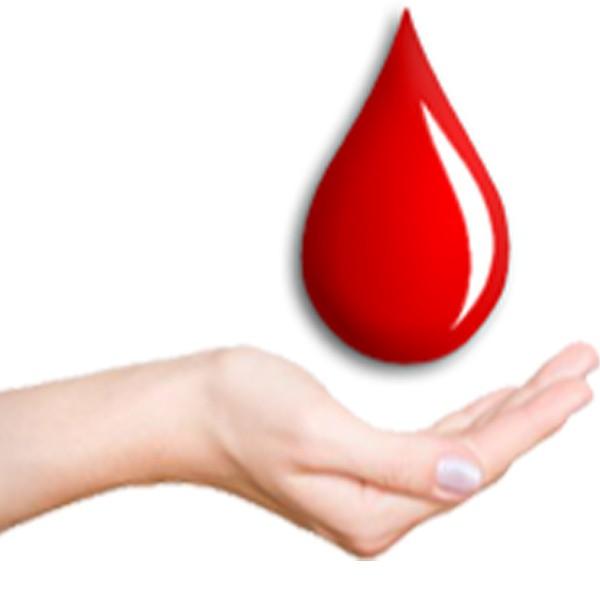 Кровь во время секса овуляция