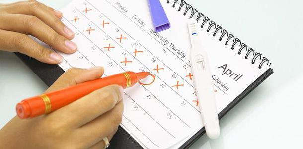 Как считают недели беременности гинекологи