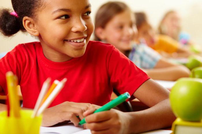 программа дополнительного образования в школе по фгос