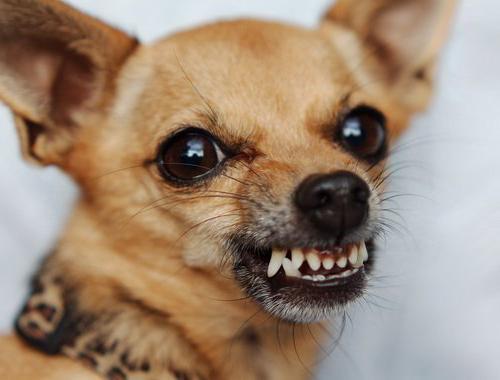 чистка зубов ультразвуком больно
