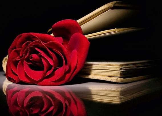 самые лучшие книги по знакомству