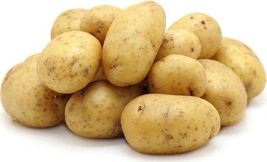 картофель сорта гала фото описание