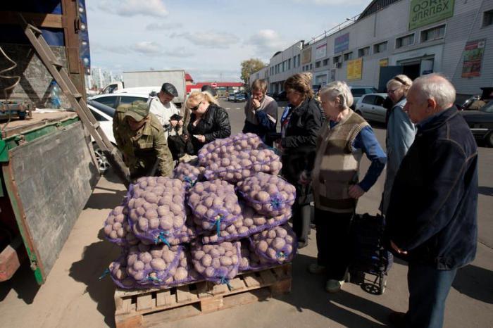 картофелеводство в России