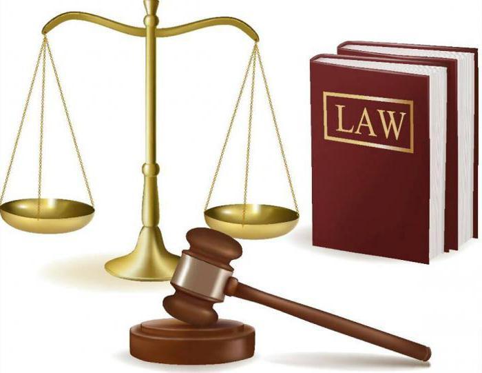 сроки обжалования решений мировых судей