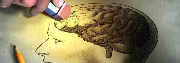 Личные особенности памяти. Возрастные особенности памяти