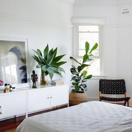 blumen schlafzimmer g nstig. Black Bedroom Furniture Sets. Home Design Ideas