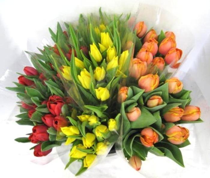 тюльпаны как ухаживать за срезанными